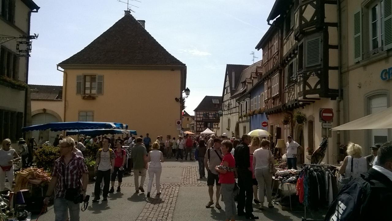 Alsace 16