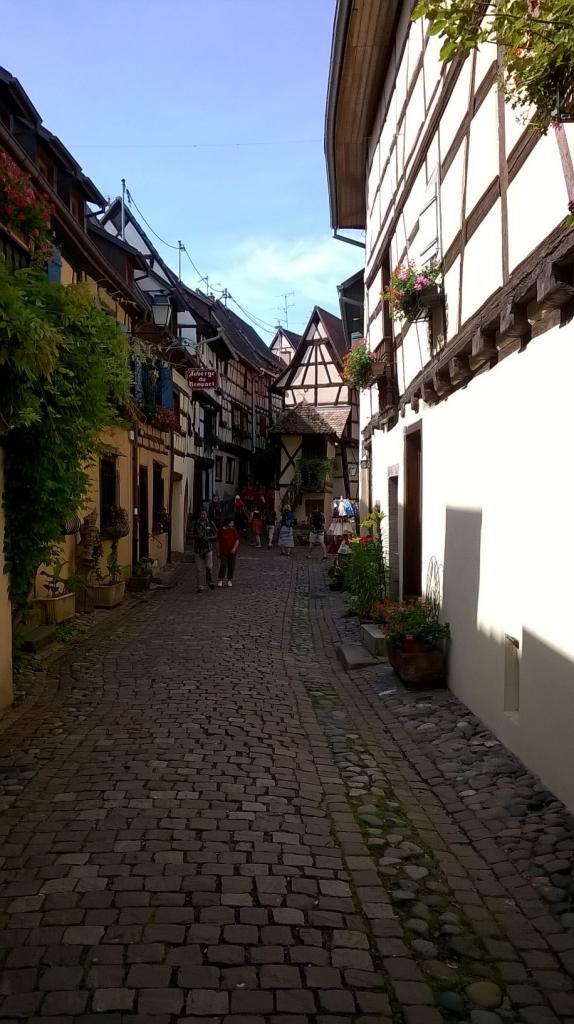 Alsace 17