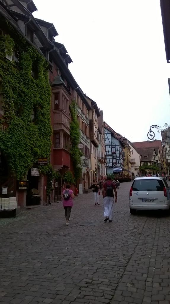 Alsace 31