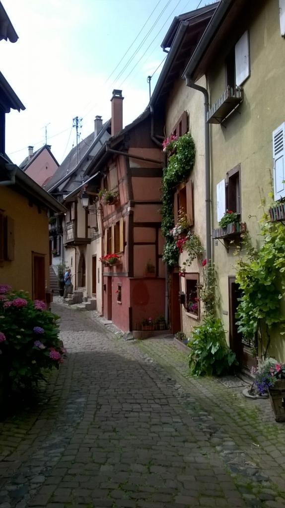 Alsace 9